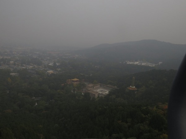 IMG_6217香山公園汚染.JPG